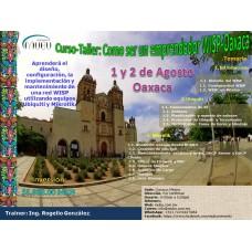 """Curso-Taller: """"Como ser un emprendedor WISP-Oaxaca"""""""